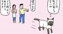 家に着く猫は引越嫌い